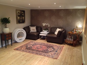 Man Cave furnished as a living room